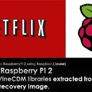 How to natively run Netflix on a raspberry PI2