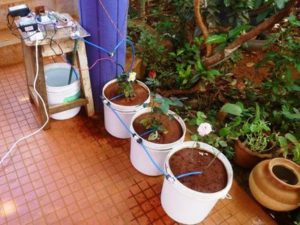 Automated Watering of Potted Plants with Intel Edison – Hackster.io