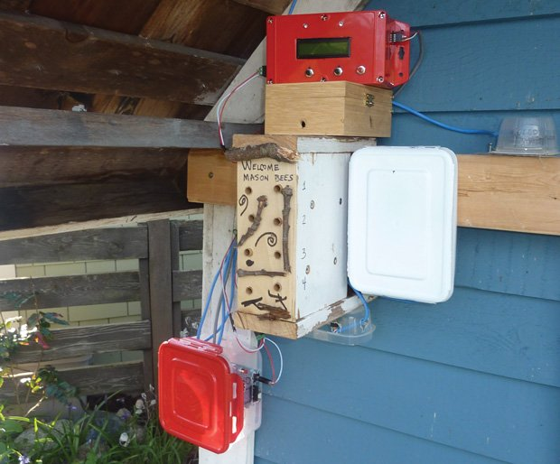 How to Build an Electronic Bee Counter – IEEE Spectrum