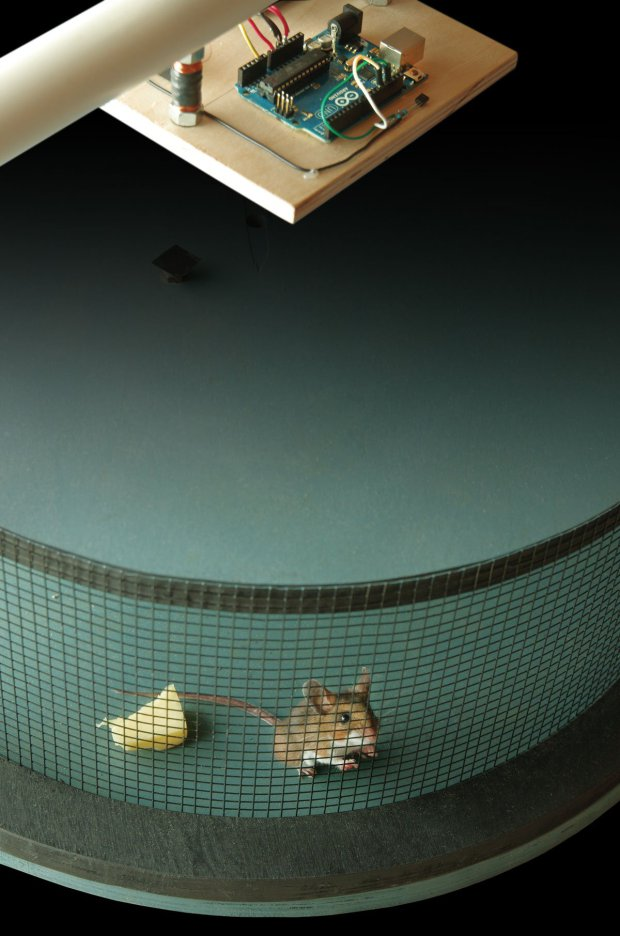 Smart Rat Trap   Make: DIY Projects and Ideas for Makers