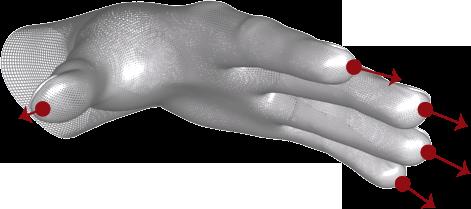 Fingers — Leap Motion Python SDK v3.1 documentation