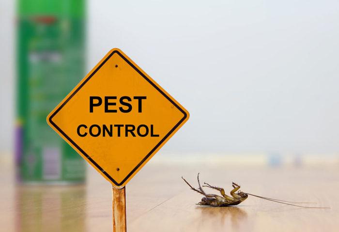 uber for pest control app clone