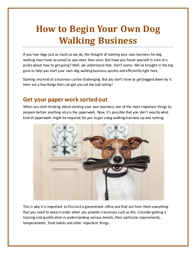 How To Begin Your Own Dog Walking Business  Starting an uber for walking dogs business might not ...