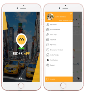 Let's go safer with Female ride hailing app in Brazil  All about the female ride-hailing a ...