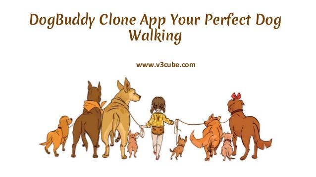 DogBuddy Clone: Dog Sitter On Demand App