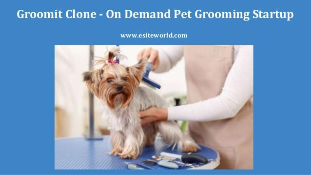 Groomit Clone – On Demand Pet Grooming Startup