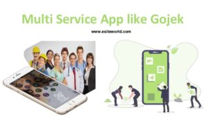 Multi service app like Gojek for your Startup Business