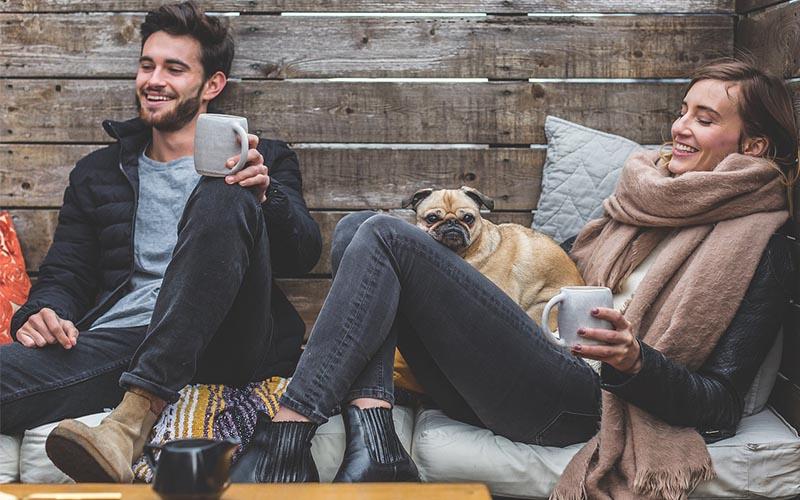 Fringe benefits of a Pet Sitting App
