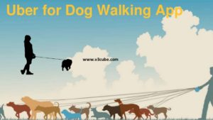 How Uber for Dog Walking App Works?