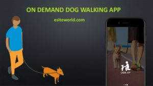 On-Demand Dog Walking App