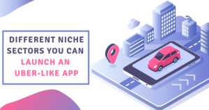 Different niche sectors you can launch Uber-like app business