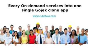 Every On demand services into one single Gojek clone app