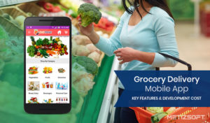Grocery Delivery Mobile App Development Cost & Key Features