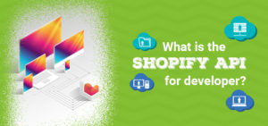 What is the Shopify Developer API?