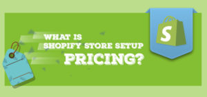 What is Shopify Store Setup Pricing?