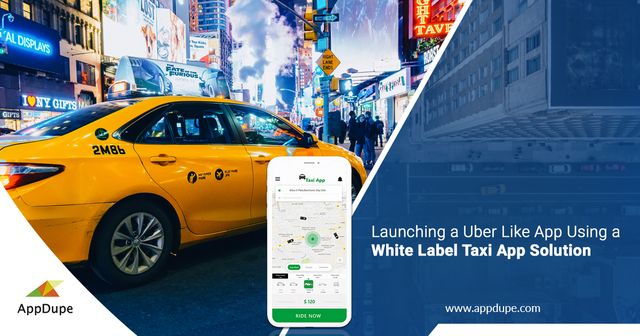 Creating a branded taxi app: Easily launch the app with an white-label solution