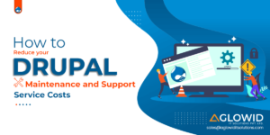 How to Reduce your Drupal Maintenance and Support Service Costs