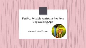 Dog walking App: Perfect Reliable Assistant for Pets