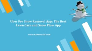 On Demand Snow Removal & Lawn Mowing Services App