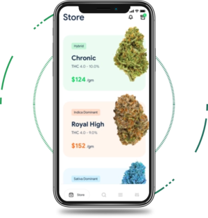Start your own legalized weed business in your region by purchasing an Uber for weed app. With s ...
