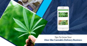 Tips To Grow Your Uber-like Cannabis Delivery Business