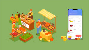 The Factors Affecting the Cost of Developing a Grocery Mobile app