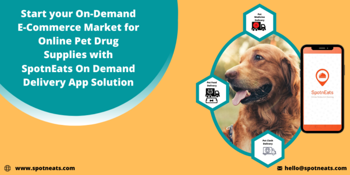 How To Launch A Successful E-commerce Marketplace For Online Pet Drug Delivery Service Startup W ...