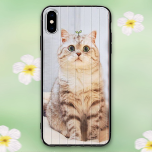 Custom iPhone Cases Personalized Aurora Phone Case Picture Phone Case – GetCustomPhoneCase