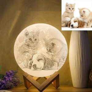 Custom Pet Photo Engraved 3D Printing Moon Lamp, Creative Idea Gift –  – photomoonlamp