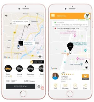 Frontrunners in Online Ride Hailing Services in Japan and South Korea