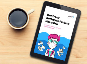 Run Your Software Project like a Pro [A non-tech guide on full-cycle Agile product development]  ...