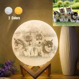 Personalized Creative 3D Print photo Moon Lamp, Lovely Pet Engraved La – photomoonlamp