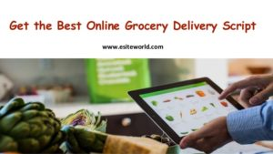 Get the Best Online Grocery Delivery Script