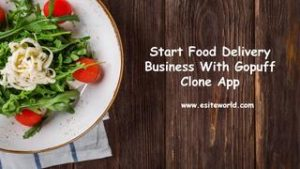 Start Food Delivery Business With Gopuff Clone App