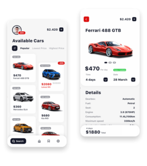 Top Best Car Rental Software Development Company India, Car Rental App SOlution Developer USA, U ...