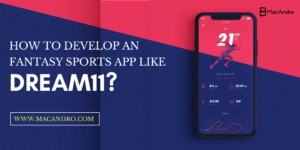 How to Develop a Fantasy Sports App Like Dream11   MacAndro