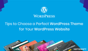 Tips To Choose a Perfect WordPress Theme For Your WordPress Website.