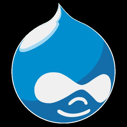 Drupal Development Company | Drupal Module Development Services  We are a proficient Drupal deve ...