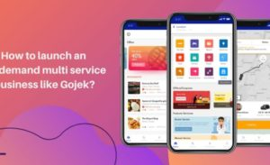 How to launch a on-demand multi service business app like Gojek?