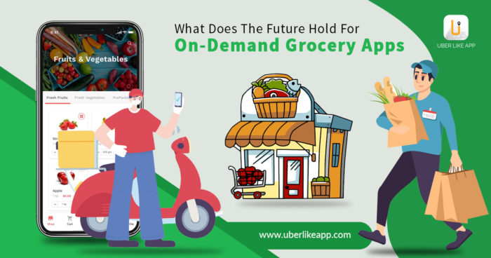 Insights into the factors, opportunities, and benefits of grocery delivery apps