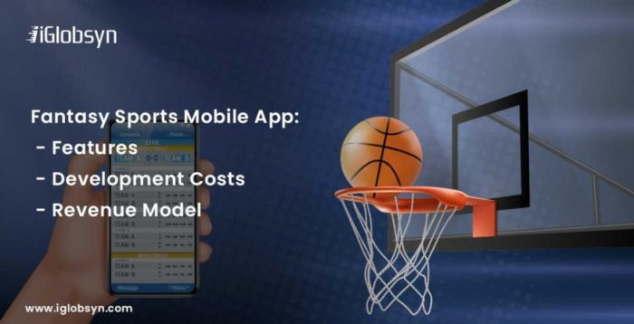 Planning to build a fantasy sports mobile app like Dream11? Read this complete guide for fantasy ...
