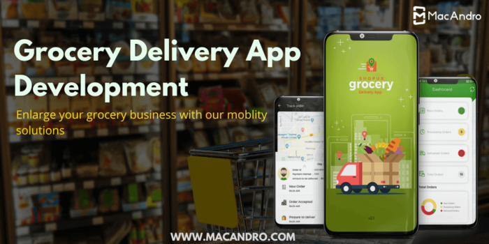 Launch your own Grocery Delivery App to enrich your grocery Business – MacAndro