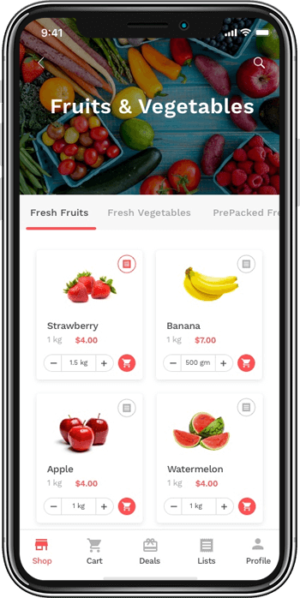 The future of on-demand grocery delivery app business