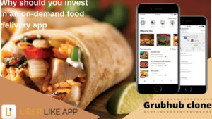 Why should you invest in an on-demand food delivery app