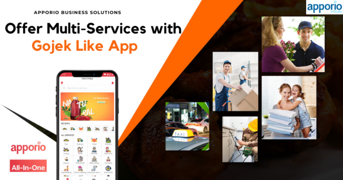 Startup Guide to Setup Multi-service business with gojek clone app