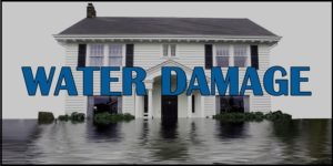 6 Common Signs Of Water Damage That You Need To Know