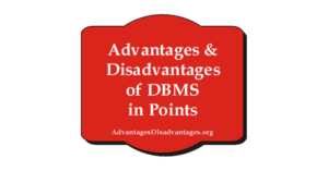 Advantages and Disadvantages of DBMS in Points