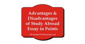 Advantages and Disadvantages of Study Abroad Essay in Points