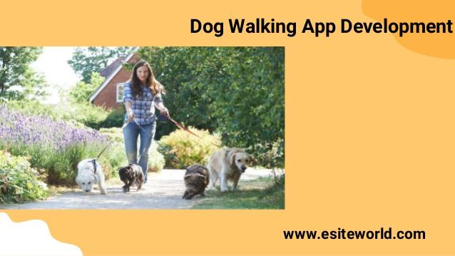 Dog Walking App Development
