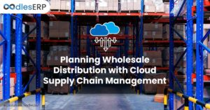 Planning Wholesale Distribution with Cloud Supply Chain Management
